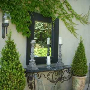 Mirror, mirror … in the garden?